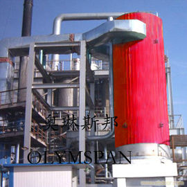 China Electric Gas Fired Thermal Oil Boiler 1.6 Mpa With Horizontal And Vertical factory